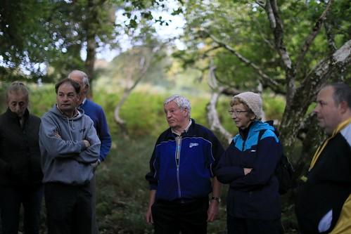 W5D_7232   Woods near Knockreer,  Killarney.  3rd October 2017.