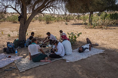 Rajasthan - Jaisalmer - Desert Safari with Camels-32