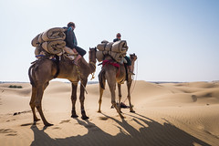 Rajasthan - Jaisalmer - Desert Safari with Camels-14