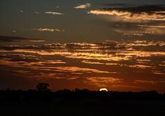 atardecer de Castilla (Alberto Va) Tags: sunset sunsetcolours sunsets clouds sun palencia palencianatural palencianature nikon nikond7100 castillayleon antigüedad magichour atardecer atardeceres sky skyline