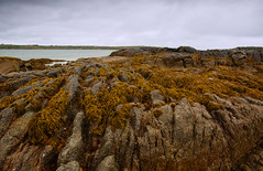 Connemara, Ireland (Daniel Kliza) Tags: connemara ireland roi republic republicofireland kylemore kylemoreabbey abbey middleofnowhere nowhere rural village nomansland