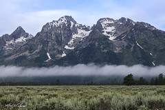 Hovering_27A0230 (Alfred J. Lockwood Photography) Tags: alfredjlockwood nature landscape clouds rockymountains sage summer morning wyoming grandtetonnationalpark peaks