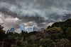 Before the storm (elisabethkrausmann) Tags: sydney australia botanicalgarden flyingfox skyline sky cloud weather