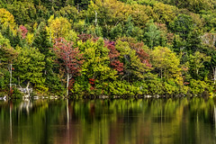 New England_reflections