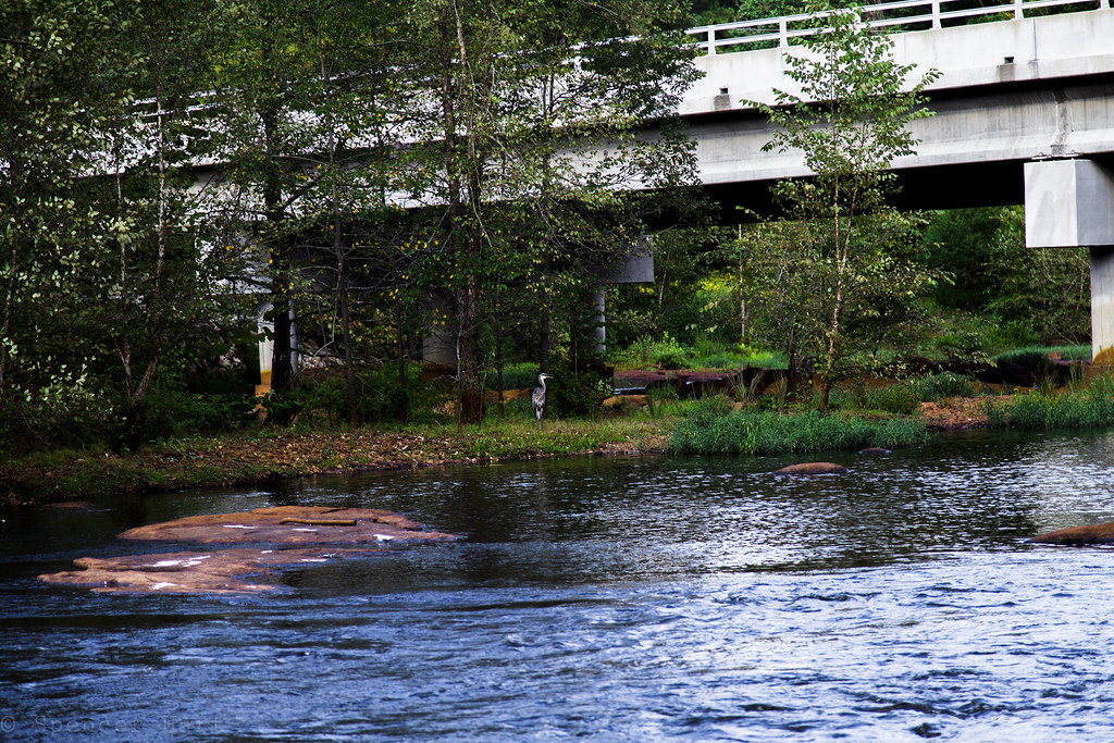 The world 39 s best photos of raleigh and water flickr hive for Landscaping rocks wake forest nc