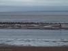The Bristol Channel (ExeDave) Tags: pa236683 minehead west somerset bristolchannel sw england s wales gb uk coast coastal beach sandbank landscape tidal midtide october 2017 mist misty cymru