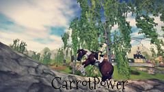 CarrotPower (Mira D.B) Tags: power carrot magic love friend sims loving star stable sso selfie selca hearts hears christmas october november naturaleza horse horses pony people electric light new news nature continent continental geography geo flourhorses mira dolphin bell flora leica smile sad frown coth5 halloween metal pumpkin pumpkins pumps spiral lego sunset beach flower natura day night photo photos green tree trees rock rocks black white blackandwhite dog cat dogs cats portraits portrait