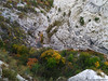 Rosandra canyon bend (Cjasar) Tags: botač botazzo glinščica rosandra valrosandra trieste sandorligodellavalle bagnoli boljunec canyon gola bend meandro meander geology geologia kras karst carso triest