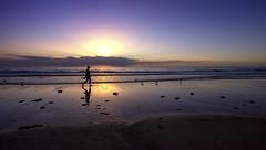 healing powers (Bec .) Tags: bec canon 80d 1022mm henleybeach adelaide southaustralia beach ocean sea shore sand seagulls light beautiful clouds waves reflection sunset silhouette man walking healingpowers peace