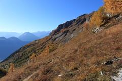 l'Erié- Lui d'Août (bulbocode909) Tags: valais suisse erié luidaoût montagnes nature paysages automne arbres mélèzes jaune bleu catogne
