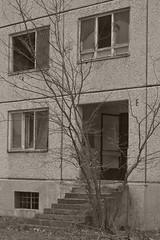 _MG_8227 (daniel.p.dezso) Tags: kiskunlacháza kiskunlacházi elhagyatott orosz szoviet laktanya abandoned russian soviet barrack urbex ruin military base militarybase