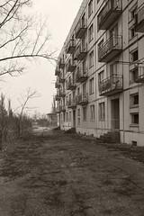 _MG_8229 (daniel.p.dezso) Tags: kiskunlacháza kiskunlacházi elhagyatott orosz szoviet laktanya abandoned russian soviet barrack urbex ruin