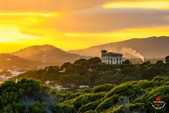 Spanish evening mood (Yarin Asanth) Tags: gerdkozikphotography yarinasanth gerd kozik yarin asanth mallorca country yellow landscape atmosphere mood spain spanish evening baleares gerdkozikfotografie yarinasanthphotography gerdmichaelkozik