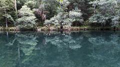 Simetria (jc.mendo) Tags: jcmendo canon 7d tamron 18270 arboles tree simetria reflejo reflejos reflection reflexion rio river fragas eume galicia