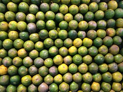 Orange Color Green Color Full Frame Backgrounds Fruit Healthy Eating Food And Drink Large Group Of Objects Food Freshness Pattern Citrus Fruit Close-up No People Nature Day Outdoors Sour Taste Supermarket (HotDuckZ) Tags: orangecolor greencolor fullframe backgrounds fruit healthyeating foodanddrink largegroupofobjects food freshness pattern citrusfruit closeup nopeople nature day outdoors sourtaste supermarket
