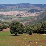 Vue sur Azrou depuis la route d'Ainleuh, Moyen Atlas, région de Fès-Meknès, Maroc. thumbnail