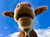 When you see jaw-dropping creativity... (Geolilli) Tags: agriculture allergy animal background beautiful blue cattle closeup cold cookers corner cow cows curiosity curious drool enjoy field funny grass green head healthy humor hunger hungry jawdropping joy meadow milk nature nose openmouth outdoors pasture perspective shock shocked sick sky sneeze snout summer surpised tree wide wow iphone iphone7plus