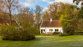 Cottage near the pont with duckweed
