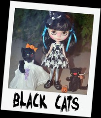 13 Days of Halloween - Black Cats