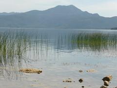 Λίμνη Τριχωνίδα!  P1030411 (amalia_mar) Tags: λίμνη τριχωνίδα αιτωλοακαρνανία ελλάδα βουνά τοπίο χλωρίδα μπλε lake trihonida etoloakarnania greece mountains landscape flora blue 7dwf