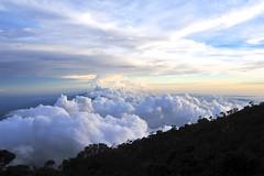 Kota Kinabalu 01 (Phytophot) Tags: trees clouds smileonsaturday treesinthepicture sunset mountain nature climb hike kinabalu kota