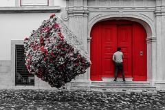 La porte rouge ! (bertranddorel) Tags: lisbonne street strett photo red rouge noiretblanc blackandwhite bnw rue pavés human homme fleurs porte mono monochrome nikon tamron