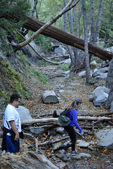 DSC_3554 (Darrell Nielsen) Tags: icehouse canyon mt baldy village ca california socal hiking timber mountain saddle icehousecanyontimbermountain cppgeographicalsociety