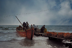 DSC_00642 (pouyan_safavi) Tags: fishing peoples people caspian birds color supershot