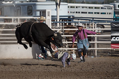 GY8A5203.jpg (BP3811) Tags: 8seconds 2017 allen arizona bareback barrel bell belt bit boots boy breakaway bronc buck buckle bull bulldogger bustin busting calf chase clown corral cow cowboys cowgirl days fall gate hat hazer header healer helmet horns horse jump kids lariat leap mutton october queen racing reins rex riders riding rodeo rope roping run saddle sheep spurs steer team teamwork tie twist wilcox wrestling