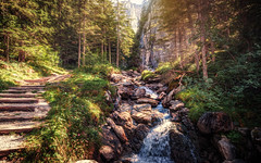 Schattenhalb II (Chrisnaton) Tags: switzerland schattenhalb mountain stream mountainstream path hiking nature landscape rosenlaui