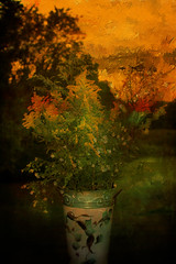Created Autumn...(Explored) (Patlees) Tags: ragweed arrangement tinvase backyard textured stock explored front page