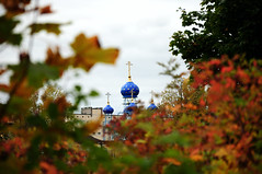 MDD_8057 (Dmitry Mahahurov) Tags: tosno hometown russia mahahurov nikon d300