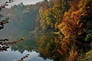 Germany, Herbst rund um den Bärensee Stuttgart, 75615/9088