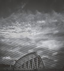 PERFILES (oroyplata.) Tags: valencia cac museodelasciencias arquitecture edificios storm rayos tormenta clouds spain perfil bn bw dark concept fine lineas lines diagonal contrast creative edition magazine landscape tonalidades contrastes