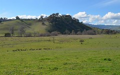 Lot 21 Twomeys Lane ( Lot 1 Withers Lane), Tumut NSW