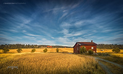 Spydeberg, Norway  0017 - Lonely House in a Landscape (Sony A6000, Canon 10-18) (IP Maesstro) Tags: house lonely isolated landscape spydeberg norway architecture abandoned old hdr sony canon ipmaesstro tree sky clouds
