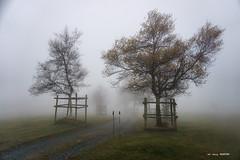 Arraba (Jabi Artaraz) Tags: jabiartaraz jartaraz zb euskoflickr arraba gorbea nature montaña frío niebla árboles camino fin esperanza