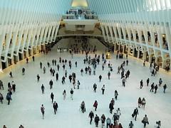 JCB04781 (jcamachob) Tags: novayork newyork travel oculus