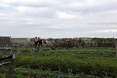 IMG_1183 (yiching.lin) Tags: ohnywknd openhousenewyork architecture farming design homegrown newyork environment brooklyn newyorkcity farm queens sustainable
