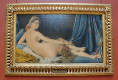 Paris (mademoisellelapiquante) Tags: museedulouvre louvre arthistory art paris france ingres painting odalisque 19thcentury 1800s