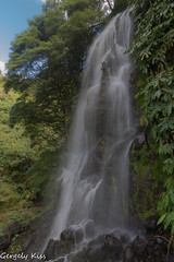 Another nice waterfall on the island Sao Miguel. (Gergely_Kiss) Tags: saomiguelwaterfall azores acores subtropicalforest wildnature waterfall ribeirasdoscaldeiroes