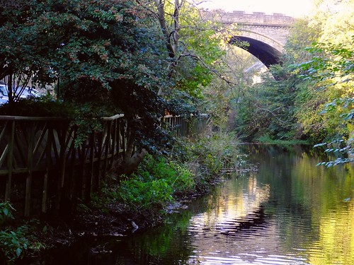 Water of Leith, autumn day 05