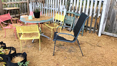 """No food is edible, if you don't feel like eating / Standing is incredible, if you hate sitting"" ―Munia Khan 🍂 (anokarina) Tags: appleiphone7 highlands louisville kentucky ky autumn yard fence table chairs outdoor outside pottedplants pineneedles"