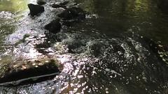 La Sédelle - Crozant - Creuse - Nouvelle-Aquitaine - France (vanaspati1) Tags: la sédelle crozant creuse nouvelleaquitaine france vanaspati1 rivière river nature europe paysage