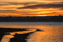 Morning Light (mclcbooks) Tags: sunrise dawn daybreak morning landscape lake clouds mist chatfieldstatepark lakechatfield colorado fall autumn bird pelican silhouette