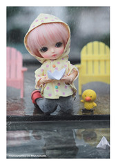 Lati Yellow Nana . Hongkong Limited ver. Alice (PruchanunR.) Tags: hongkong limited ver alice lati yellow bjd balljointdoll doll toy