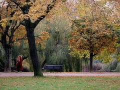 Lady in the Red Coat (Clare-White) Tags: challengeyouwinner vondel amsterdam outdoors autumn green scenery nikon pathway red lady morning october leaves nikpn nature