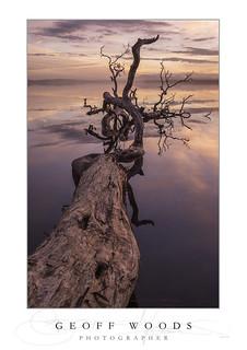 Twilight Myall Lakes.