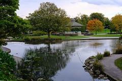 A walk in the park (HonleyA) Tags: yorkshire autumnal autumn bandstand pond lake huddersfield greenheadpark park 35mmf2 xpro2 fujinon fuji fujifilm fujifilmfujifujinon