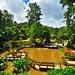 Mae Fah Luang Garden i giardini dell Regina Madre